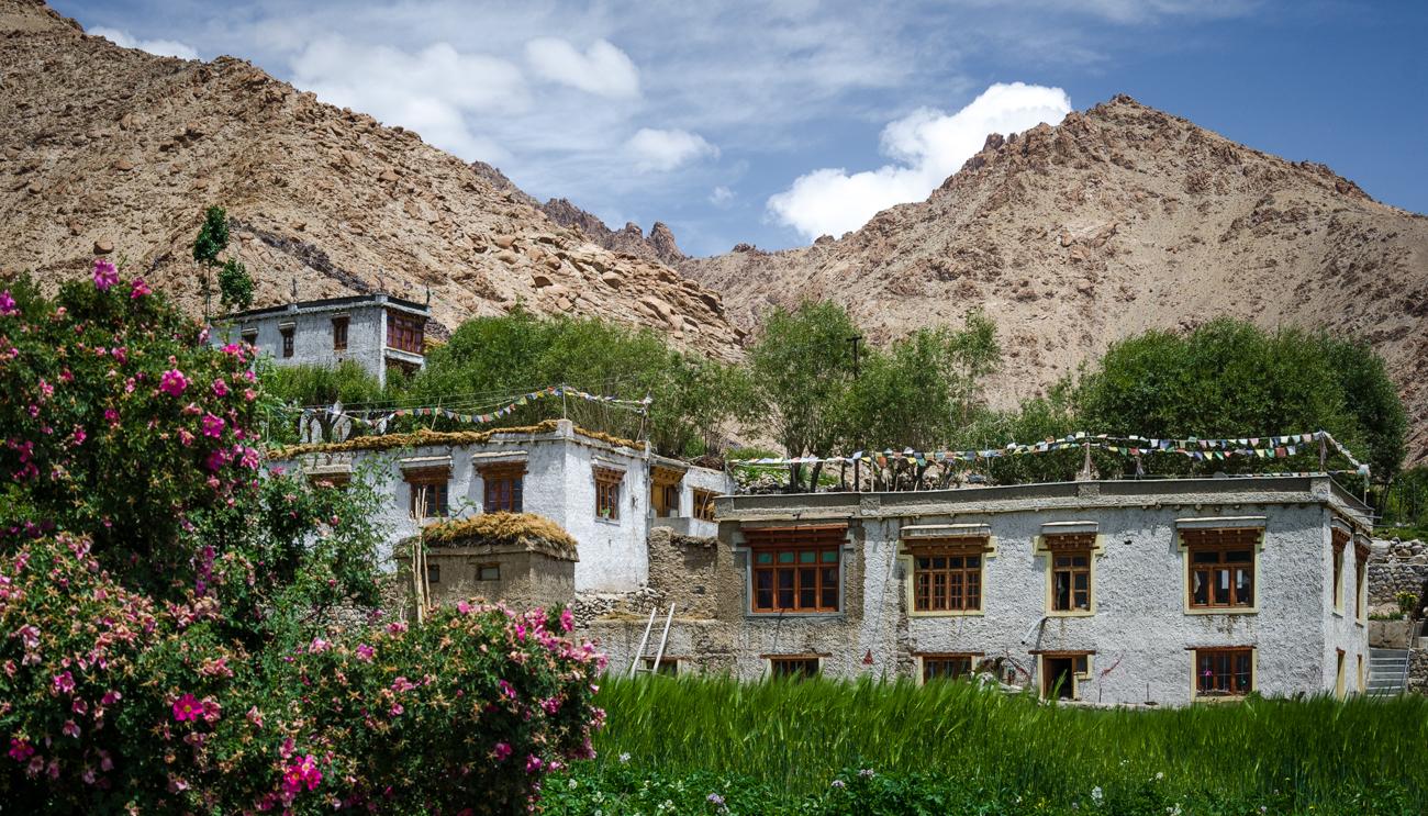 ladakh-3930