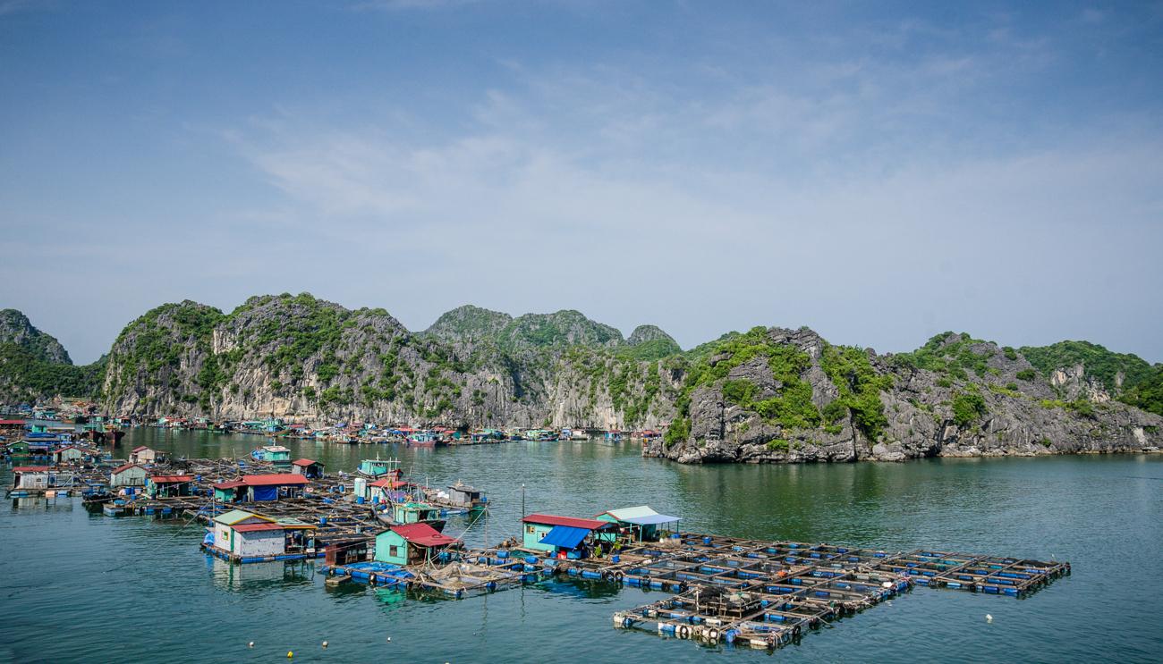 vietnam-1171
